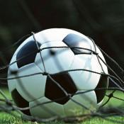 Тревни смески за спорт