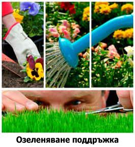 Озеленяване поддръжка